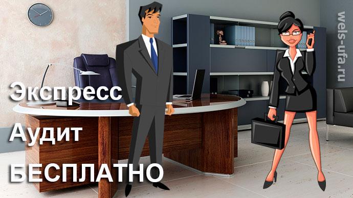 Экспресс-аудит фирмы Бесплатно